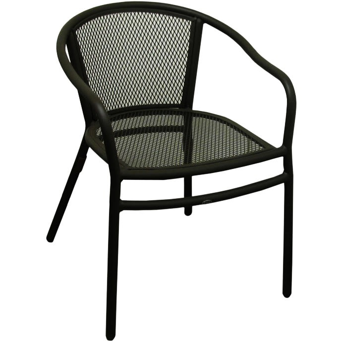 Rosa Metal Patio Chair With Arms in Black Finish