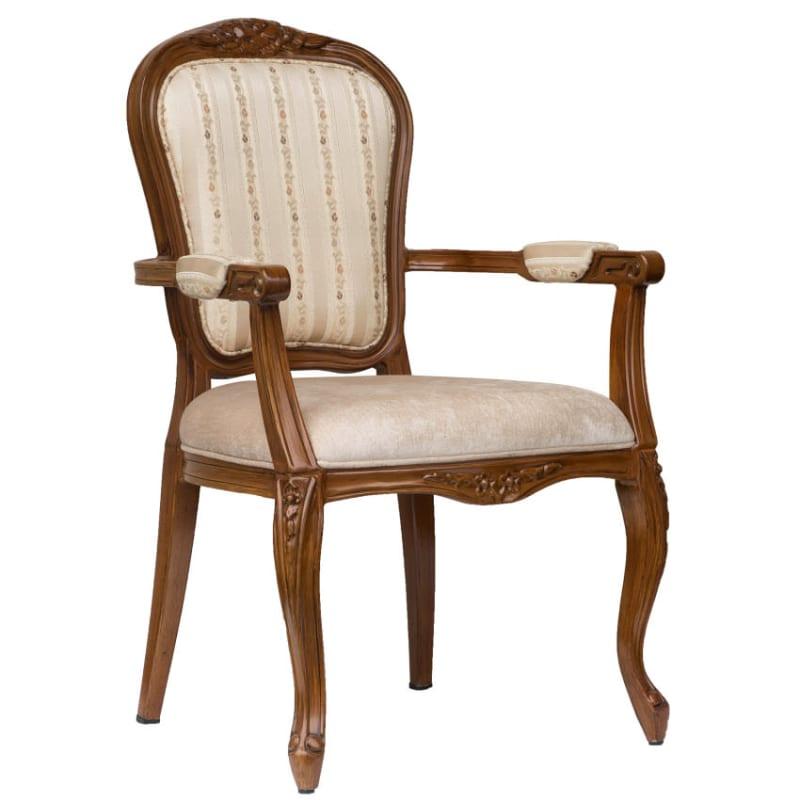 Cecile Senior Living Aluminum Arm Chair